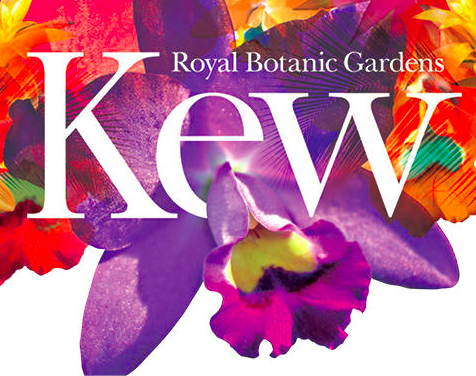 Courtesy Kew Royal Botanic Gardens