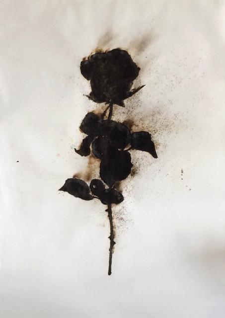 TYPOE  Untitled (Rose) 2014, Ignited gunpowder on paper, 80.5″ x 60″