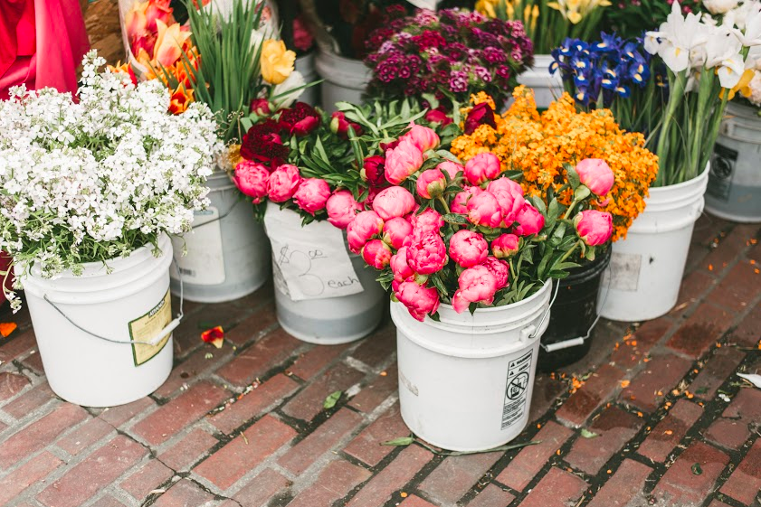 'Tis the season for peonies at Pike Place Market